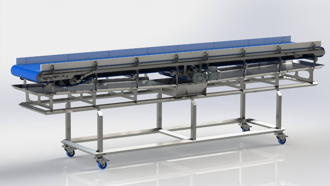 Belt conveyor for frozen strawberries